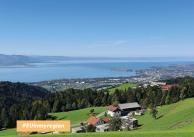 Nowe sąsiedztwo - projekt dostarcza informacji na temat projektowania przestrzeni mieszkalnej i użytkowej w Austrii
